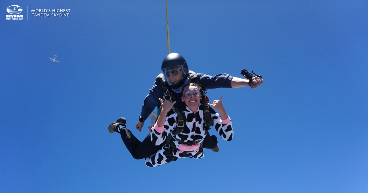 Skydive Monterey Cow Costume Freefall