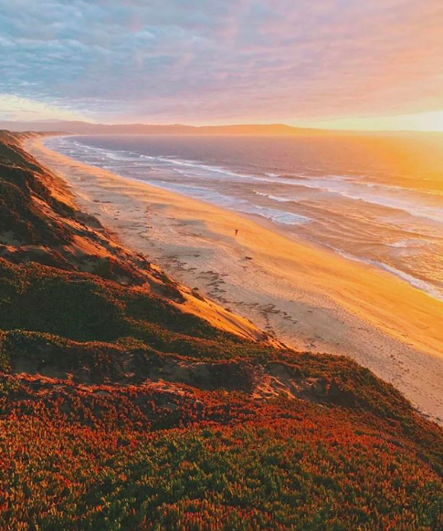 Top 4 Instagram Accounts to follow in the Monterey Bay Area